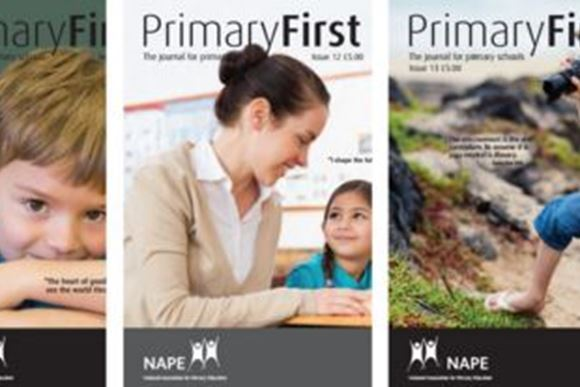 NAPE Journal for Primary Available for Free