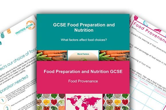 Practical Action Free Food & Nutrition GCSE Resource