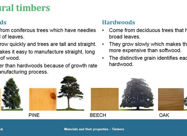 Materials and their properties - Timbers, GCSE classroom teaching resource