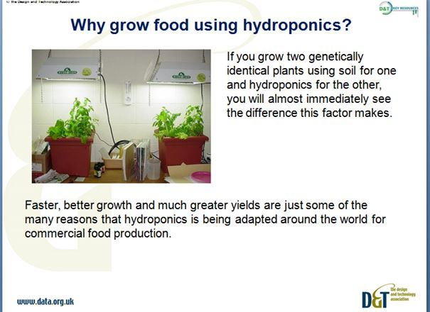 Food late KS3 Y9 Technology in Society - Hydroponics